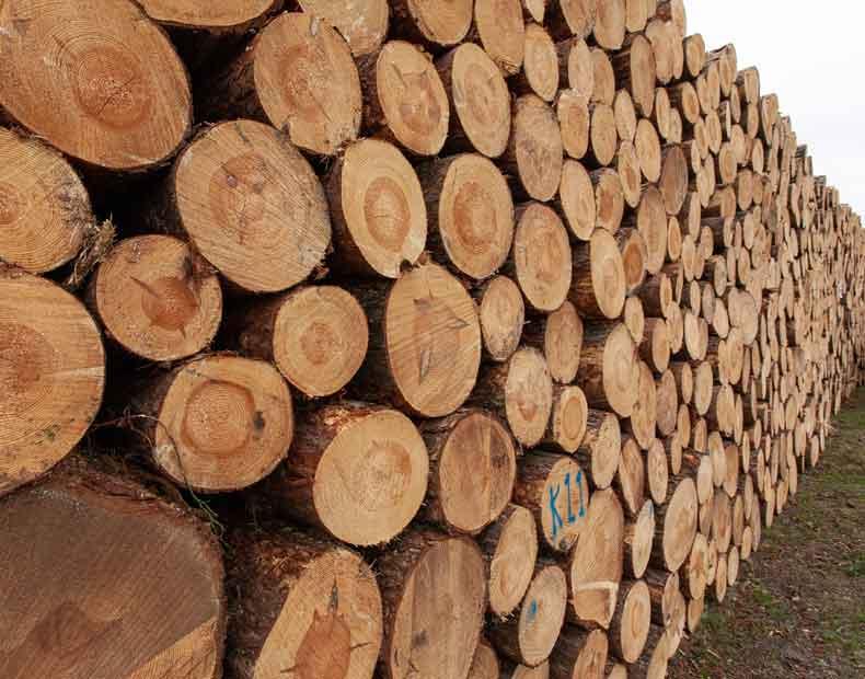 Ako môžete využiť drevené fošne